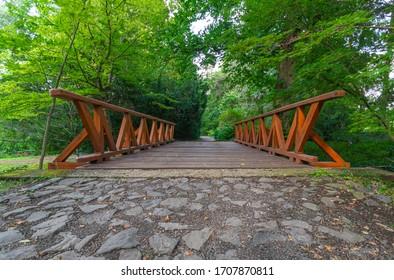 Small Bridge in Vácrátót Botanical Garden, some 30 kilometers north of Budapest, Hungary.