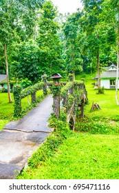 Small bridge in forest, Thailand.