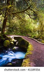 A small bridge over the head of Multnomah Falls in Oregon