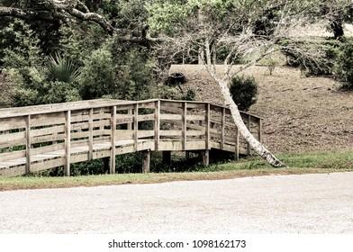 Small bridge in park Niceville, FL