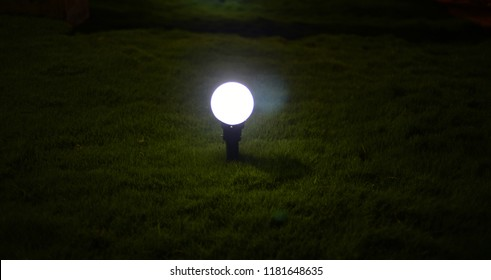 A small bright electric lights in the garden isolated unique photo