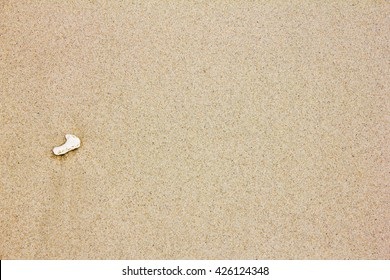 small broken coral on beach sand texture background
