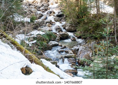 Small brook, fallen trees and rocks