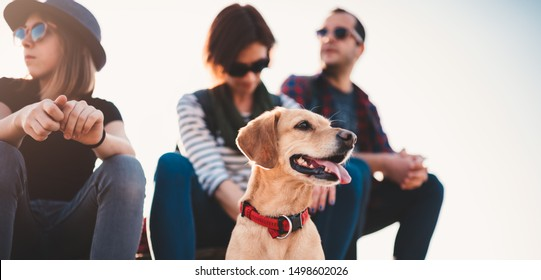Small brown dog and family sitting outdoor on a wooden deck