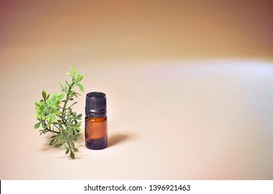 Small Brown Five Milliliter Essential Oil Bottle with Plant