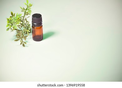 Small Brown Glass Essential Oil Bottle with Plant on Light Green Background