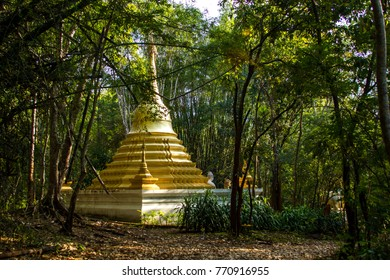 A small Buddhist temple in the forest of Thailand.