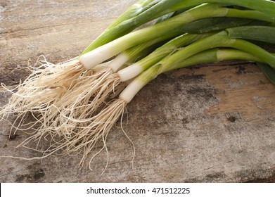 Small bunch of freshly harvested green onions with roots on a rustic table