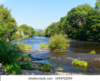 A small bush grows on a slab of rock in the fast flowing River Dee in Llangollen, Wales