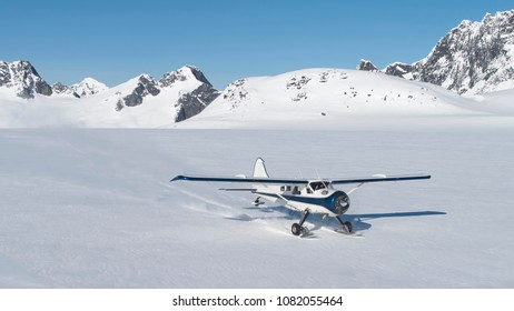 Small bush plane with skiis landing on snow in Southeast Alaskan mountains on a sunny day in spring.