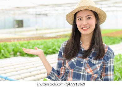 Small business entrepreneur concept : Portrait photo of young attractive beautiful Asian woman harvesting fresh vegetable salad from her hydroponics farm in greenhouse before send to sell at market.