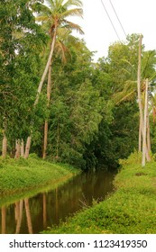 A small canal in Chempallykkundu (In Kannur District of Kerala).