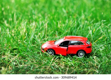 Small car model over green grass background