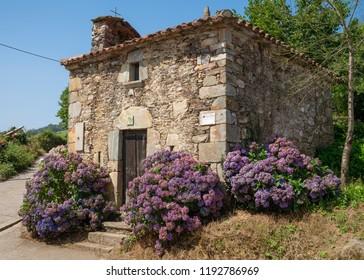 Small chapel of La Pereda with blooming hydrangeas, Camino de Santiago, Asturias Spain