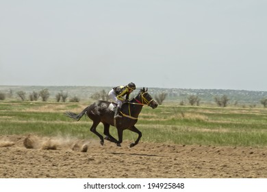 SMALL CHAPURNIKI, VOLGOGRAD, RUSSIA - MAY 24:The jockey riding a horse during the horse races devoted to celebration of the Sabantuy . May 24, 2014 in Volgograd, Russia.