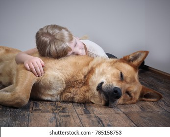 A small child and a big dog sleeping together lying on the floor