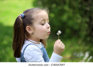 Small child blowing a dandelion