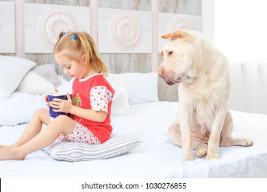 A small child eating in pajamas. The dog is hungry. The concept is childhood, lifestyle, pets, friendship.