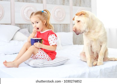 A small child eating popcorn. The dog is hungry. The concept is childhood, lifestyle, pets, friendship.