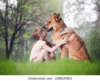 A small child and a huge dog. The concept of true friendship, trust, safety of Pets for children
