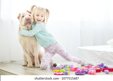 A small child is hugging his big dog. The concept of lifestyle, childhood, upbringing, family.