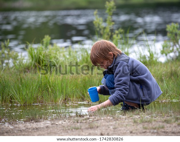 Small child looking for bugs in a small rural pond.