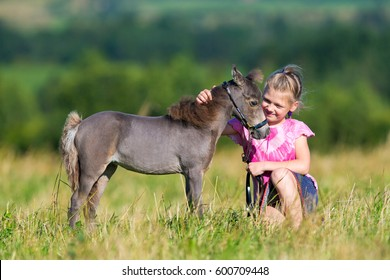 Small child with a small miniature horse in field. Girl and foal outdoors. Cute mini horse and child in summertime