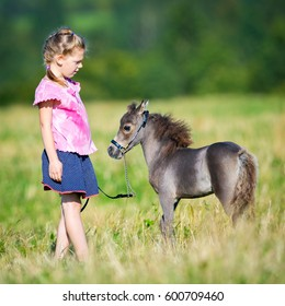 Small child with a small miniature horse walking in field. Girl and foal outdoors. Cute mini horse and child in summertime