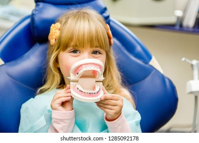 A small child plays with artificial jaws. Children's dentistry. Dental office.