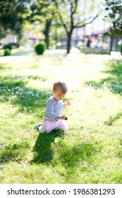 Small child sits on his knees in a meadow and holds a pine cone
