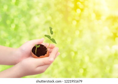 Royalty Free Spring Beginning Images Stock Photos Vectors