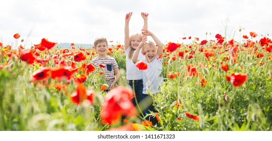 Small children jump and throw petals in a large field of red poppies. Friendly brothers and sister