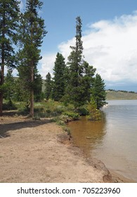 A small clearing by the Granby Lake in Colorado.  There are evergreen trees.  The sky overhead is bright blue with white puffy clouds.