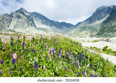 Small Cold Valley, Vysoke Tatry (High Tatras), Slovakia
