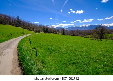 Small country road, meadows and trees in the french Pyrenees mountains, Ariege