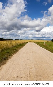 a small country road, photographed in the summer