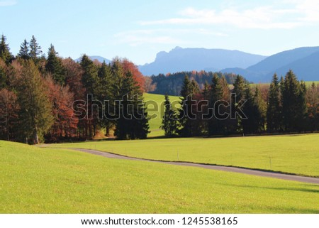 Small country road through the hilly alpine upland in fall, mountains in the background, Bavaria, Germany