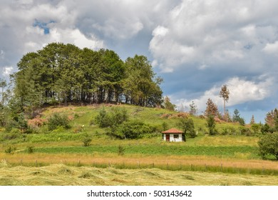 Small countryside house next to a small hill with trees