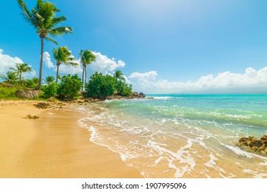 Small cove in Le Gosier shore. Guadeloupe, Caribbean sea