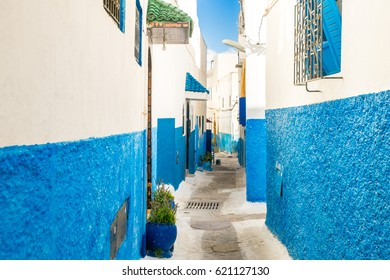 Small cozy streets in blue and white on a sunny day in the old city (medina) Kasbah of the Udayas (Oudaia). UNESCO heritage site. Rabat, Morocco