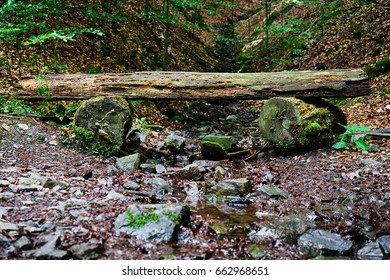 Small creek with stones and a little wooden bridge or bench over it