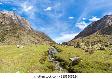 Small creek in a valley of Sierra de la Culata national park, in venezuelan Andes mountains