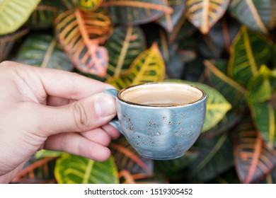 A small cup of espresso in hands on a background of plants. close-up