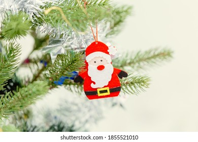 small cute santa decoration doll at pine tree for Merry Christmas and Happy New Year event celebration.