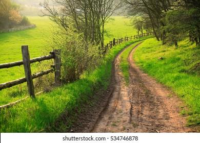 Small Dirt Road through Green Fields, Spring Landscape