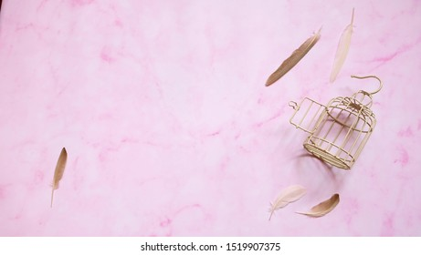 A small empty bird cage with door opened, and a few feathers scattered around the cage.