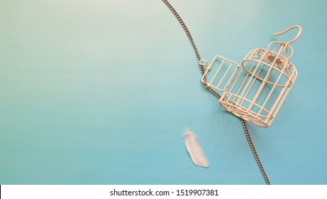 A small empty metal bird cage with its door opened and chain unwind. A single white feather is placed next to the cage.