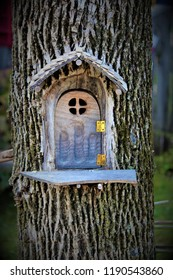 A small fairy door carved into a tree