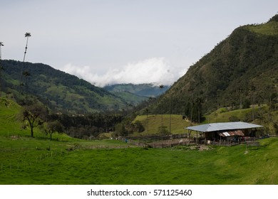 A small farm in the Cocora Valley in Colombia