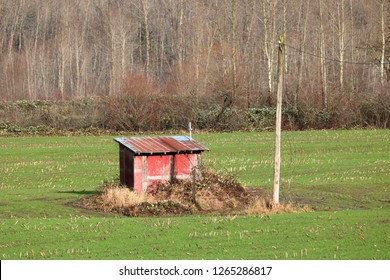 A small farm utility shack in the middle of agricultural land where an energy source provides power for crop irrigation.